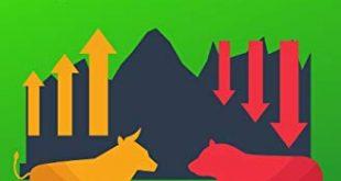 Aktien fuer Einsteiger und Fortgeschrittene Erfolgreich in Aktien investieren 310x165 - Aktien für Einsteiger und Fortgeschrittene: Erfolgreich in Aktien investieren